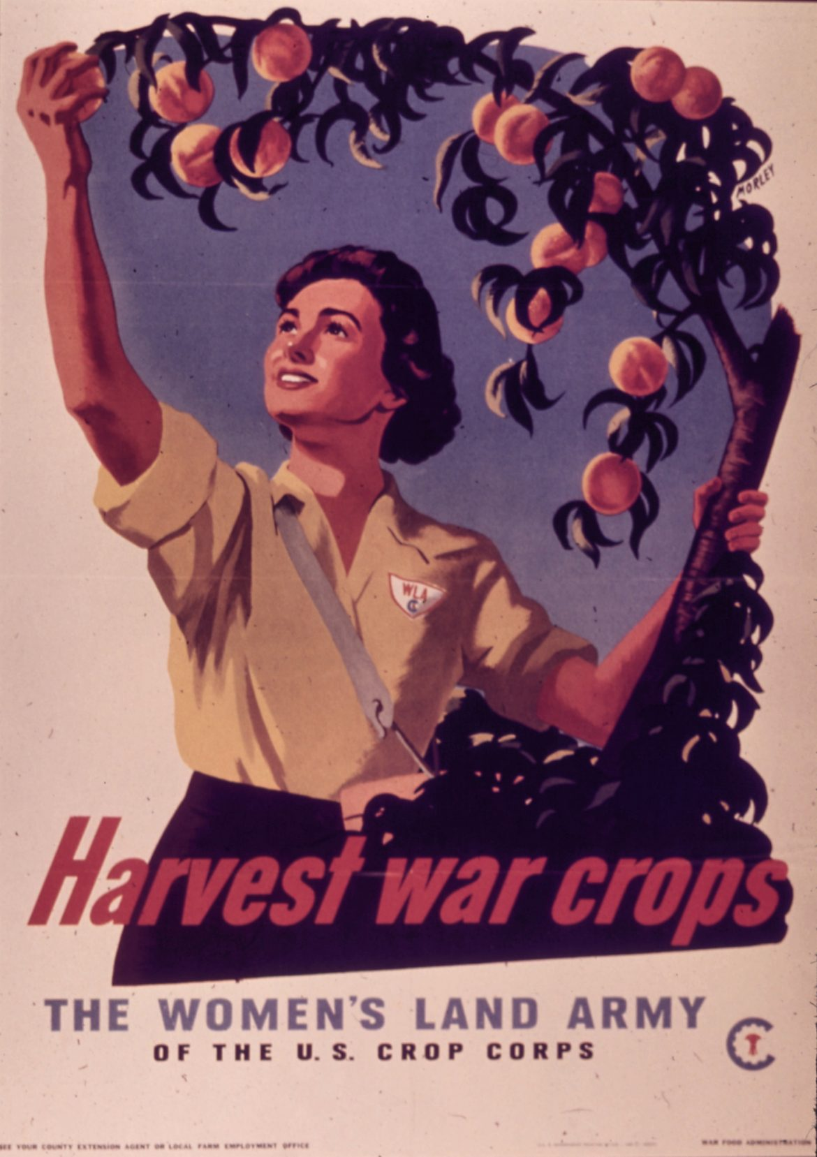 Harvest War Crops WLA Recruiting Poster