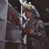Aviation Stock Room Clerk Does Parts Inventory